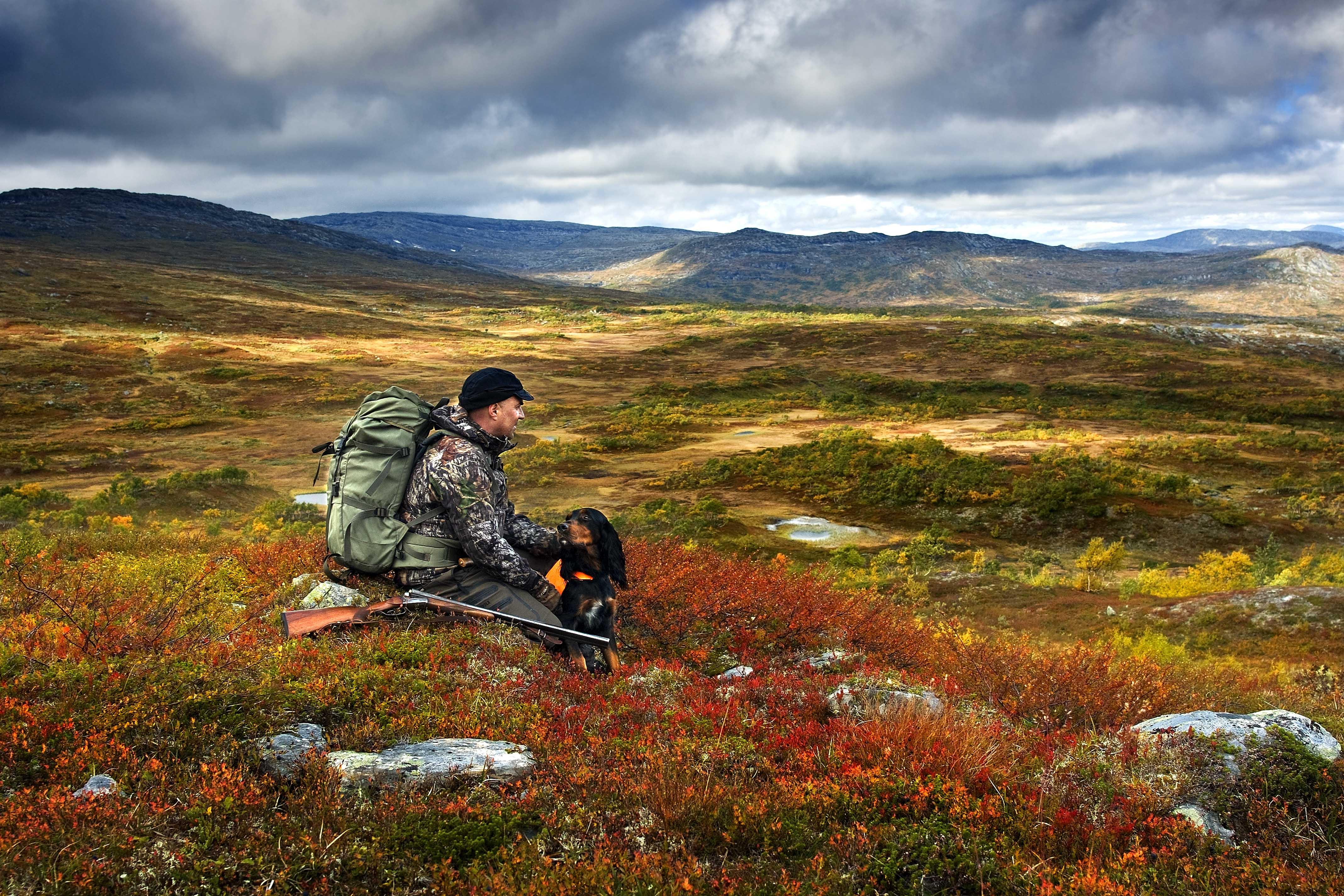 Høst i fjellet i Namdalen. Foto: Steinar Johansen/Besøkssenter nasjonalpark Lierne