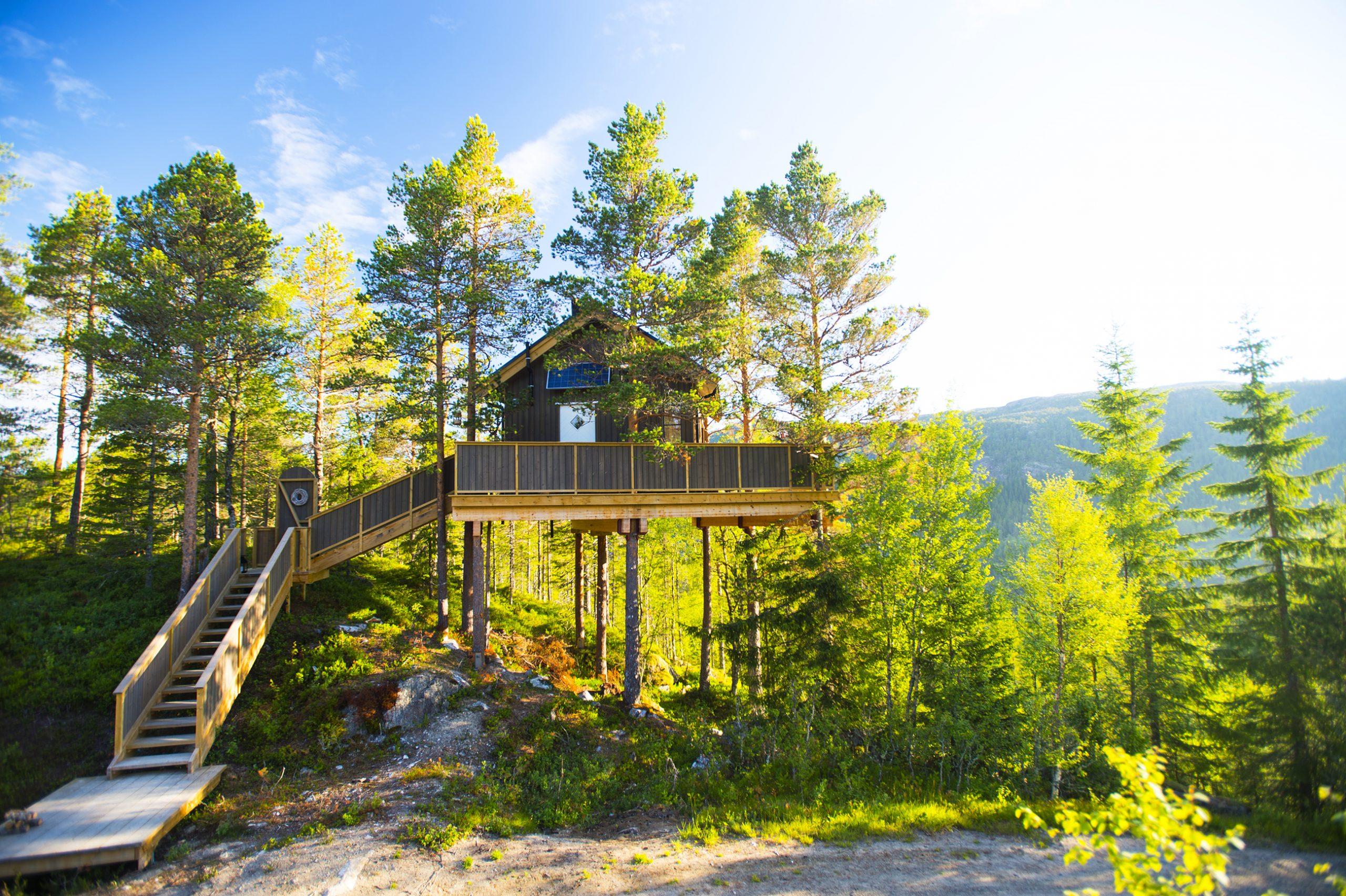 Himmelhøy tretopphytte, Namsos. Foto: Olav Breen / Kystriksveien Reiseliv
