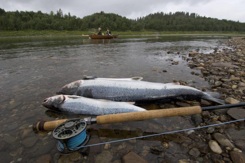 Fiskeveien/Fiskevägen – en rute, to land, tusenvis av fiskemuligheter