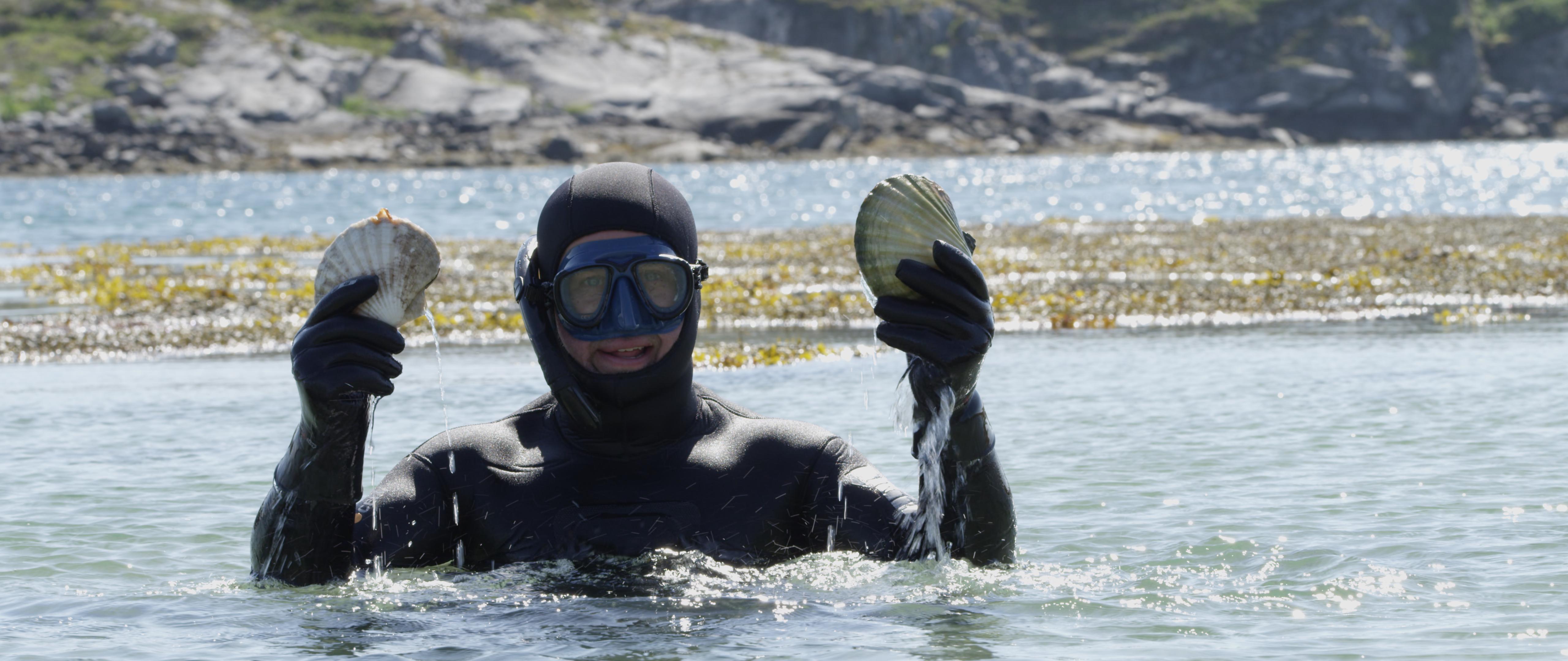Dykker holder opp to muslinger ved Namdalskysten. Vannaktivitieter i Namdalen, Trøndelag.