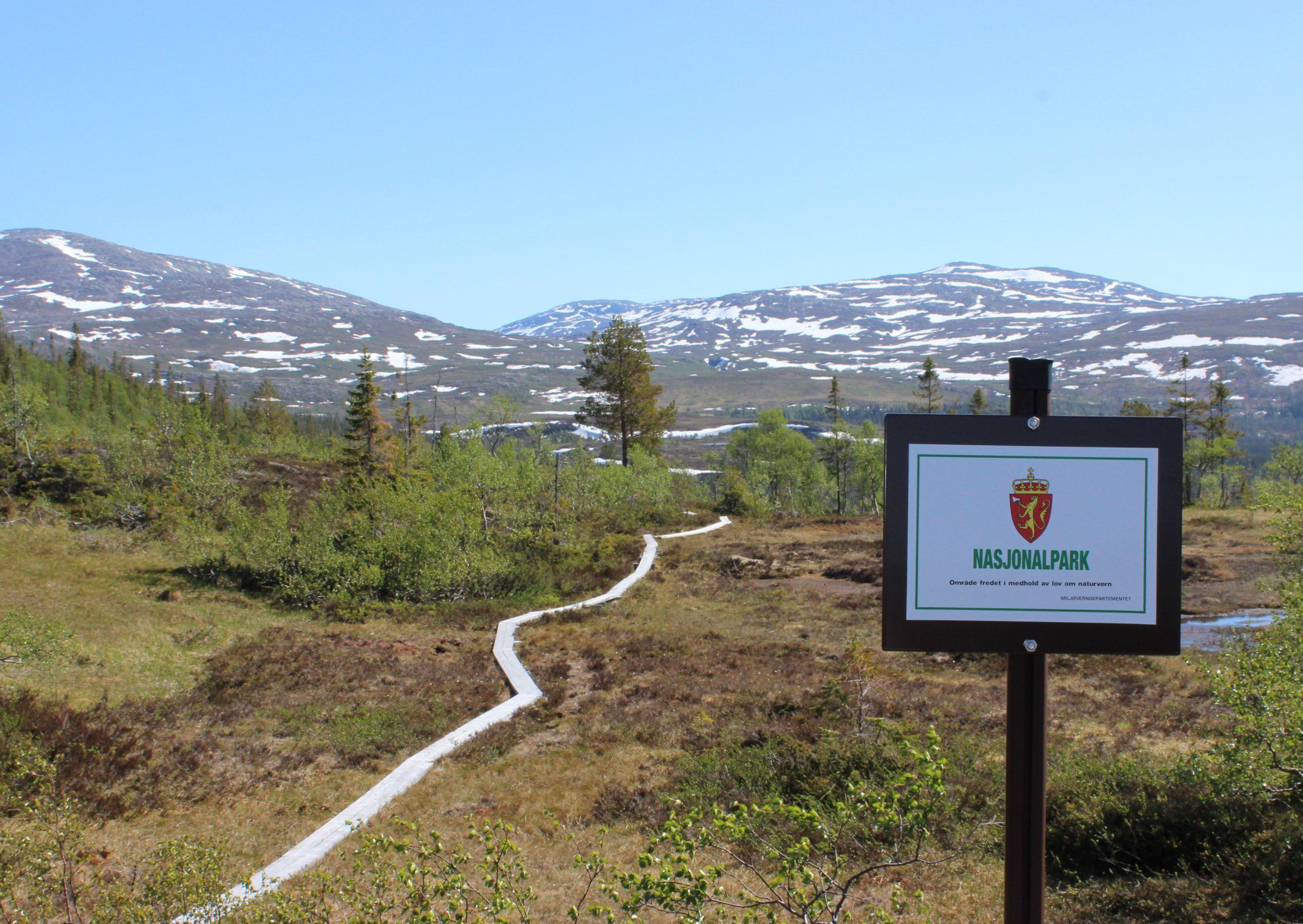 Vandring og fjellturer i Namsskogan, Børgefjell nasjonapark. Foto: Namsskogan Fjellstyre