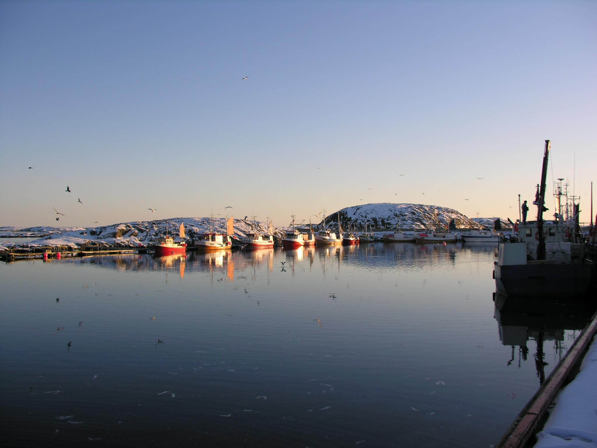 Båter til kai ved Vandsøya i VIkna, Namdalen, Namdalskyten, Trøndelag. Gjestehavn. Foto: Anne Grete Walaunet.